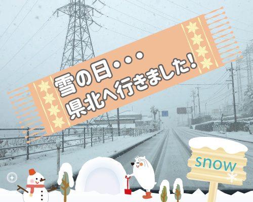 今冬最強寒波と雪・・・ イメージ