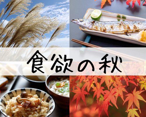 食欲の秋 ですね(*'ω'*) イメージ
