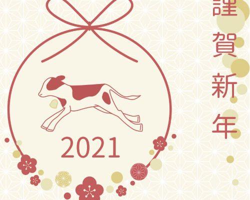2021年 丑年START ★.* イメージ